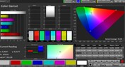 CalMAN Color Space DCI P3 – Modalità Display regolabile