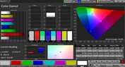 CalMAN Color Space sRGB – Modalità Display regolabile